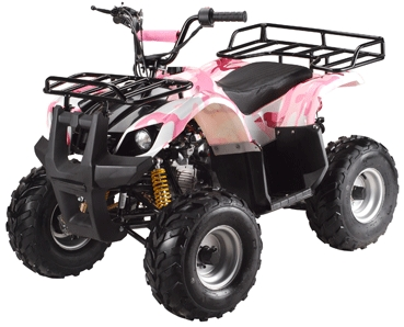 110cc elite series fully assembled automatic atv w chain drive transmission. Black Bedroom Furniture Sets. Home Design Ideas