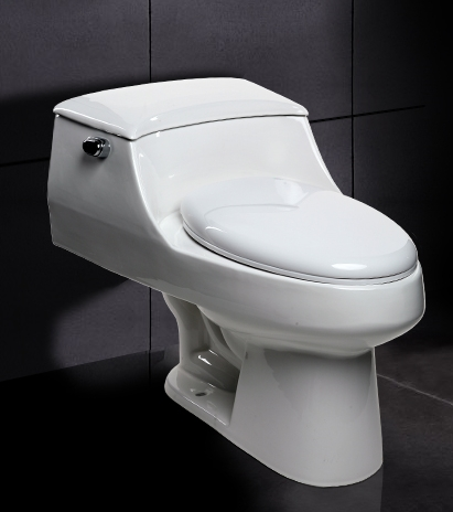 Ariel a 327 contemporary european toilet for Toilets in european bathroom