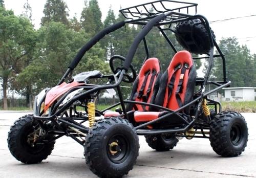 200cc Jaguar S Pgo Adult Full Size Go Kart