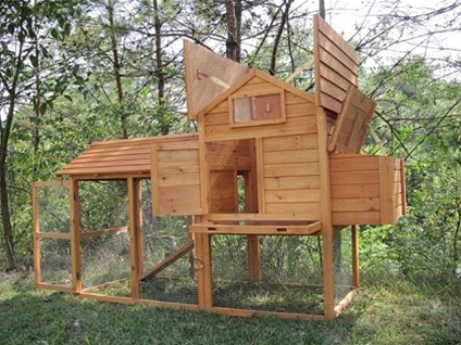 High Quality Apex Roofed Chicken Coop