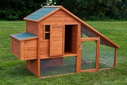 High Quality Backyard Chicken Coop House with 2 Internal Perches