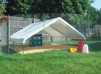 high quality pastured poultry chicken coops