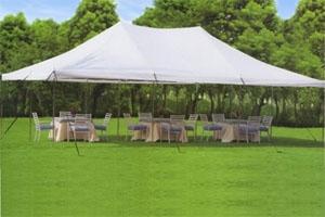 High Quality White 20u0027 x 30u0027 Commercial Grade Party Tent With Mosquito Netting & Quality White 20u0027 x 30u0027 Commercial Grade Party Tent With Mosquito ...