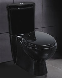 Ariel 8019 Black Contemporary European Toilet with Dual Flush