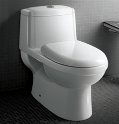 The Anna - Ariel Platinum TB222M Contemporary European Toilet with Dual Flush