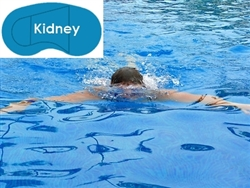 Complete 16'x32' Kidney In Ground Swimming Pool Kit with Polymer Supports