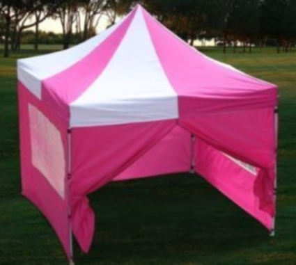 10u0027x10u0027 Pink u0026 White Easy Pop Up Canopy / Tent & x10u0027 Pink u0026 White Easy Pop Up Canopy / Tent