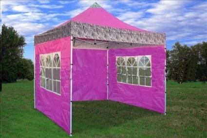 Brand New 10u0027 x 10u0027 Pink Zebra Pattern Pop Up Tent & New 10u0027 x 10u0027 Pink Zebra Pattern Pop Up Tent