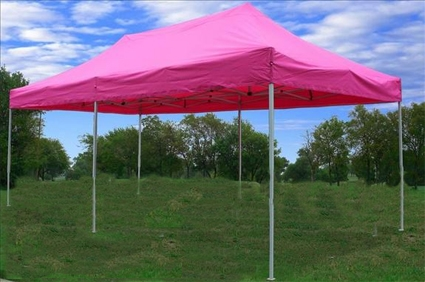 Poppinu0027 Pink 10u0027x20u0027 Pop Up Canopy / Tent & Pink 10u0027x20u0027 Pop Up Canopy / Tent