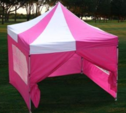 This New 10u0027X10u0027 Easy Pop up Set Canopy package deal is a great no-fuss outdoor shelter. It is Ideal for family parties weddings picnics sports events ... & 10u0027x10u0027 Pink u0026 White Easy Pop Up Canopy / Tent