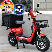 500 Watt Mercury Scooter Moped Pizza Delivery Mobile