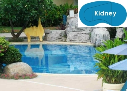 Complete 16\'x32\' Kidney InGround Swimming Pool Kit with Polymer Supports