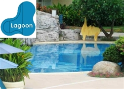 Complete 18x38x29 Lagoon In Ground Swimming Pool Kit with Wood Supports