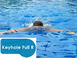 Complete 20x40 Keyhole Full R InGround Swimming Pool Kit with Polymer Supports