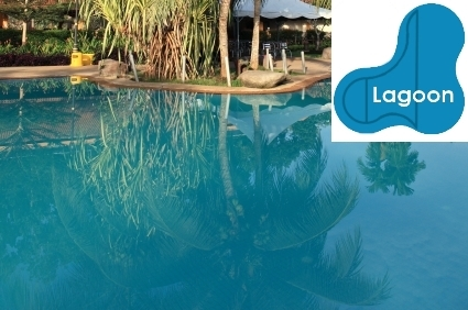 Complete 20x40x30 Lagoon InGround Swimming Pool Kit with Wood Supports